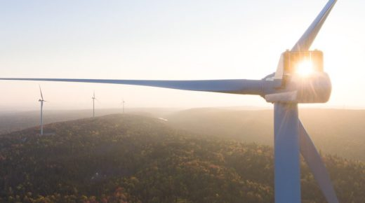 Cultivating a Post-Carbon Vision