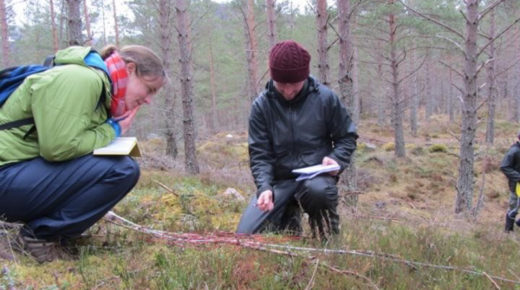 Opportunity: New MSc in Managing Environmental Change