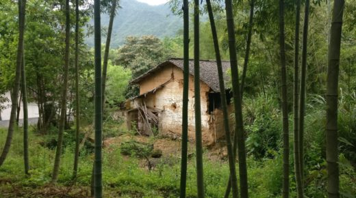 Revitalizing Rural China with Art and Design