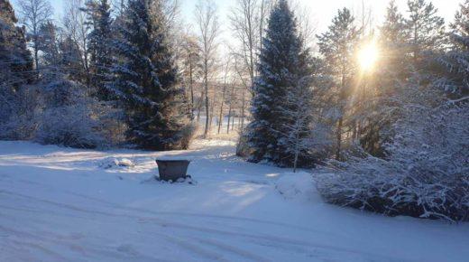 Tiny Coronavirus Stories: 'New snow has fallen'