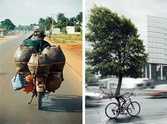 Post image for oil and tree cycles: art and activism – join global cycle day 24 Sept