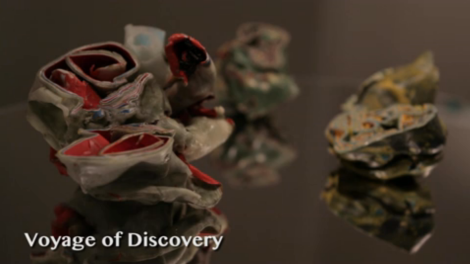 Voyage of Discovery AAAS art climate change